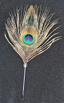 Peacock Ball Point